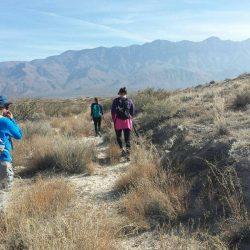 Hiking along Salt Basin Trail in Guadalupe National Park