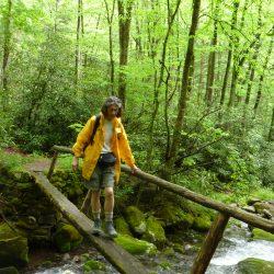 hiker walking over a log bridge