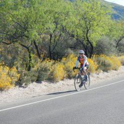 biker on a road