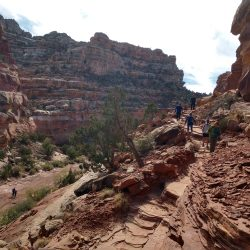 Cassidy Arch Trail in Capital Reef National Park