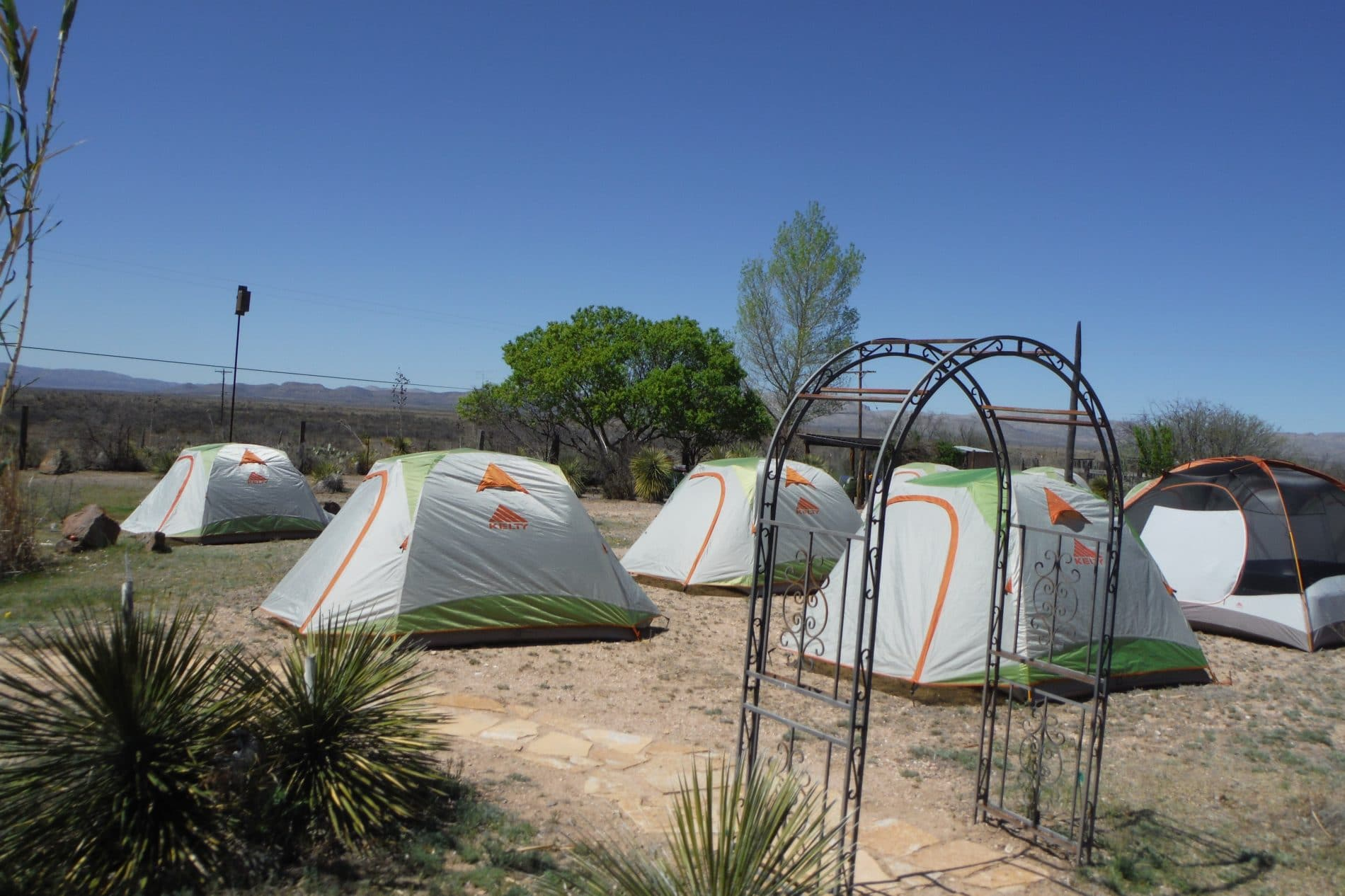several tents in nature