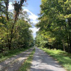 Wooded trail along east coast bike trip