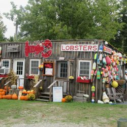 lobster shop in Maine