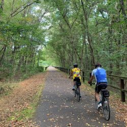 bikers on a trail