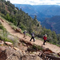 A group of hikers on a trail in the Grand Canyon