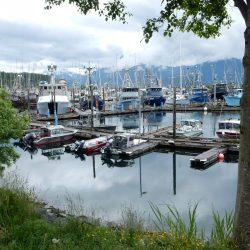 Marina in Alaskan bay
