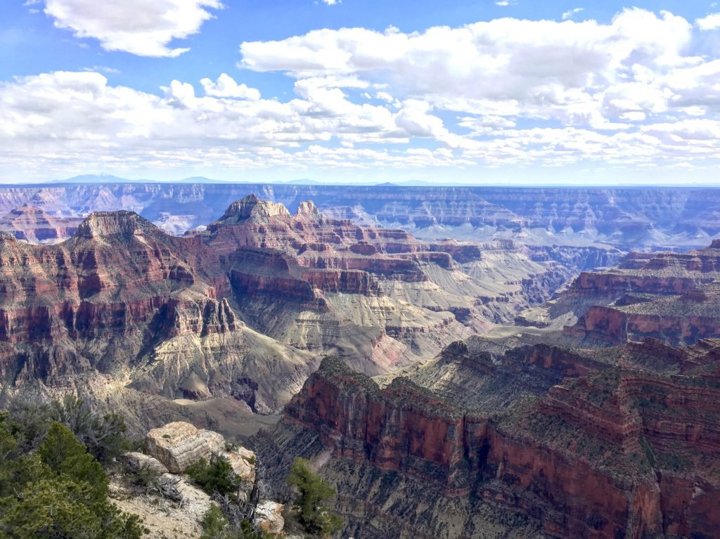Colorful view into the Grand Canyon from the South Rim