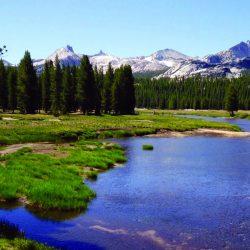 View of Mt. Zirkel Wilderness as seen from Elk River, Colorado