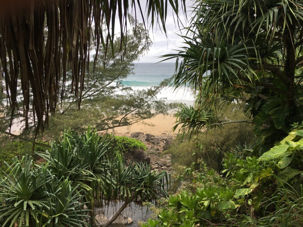 Hanakoa beach along the Kalalau Trail, Kuaai, Hawaii