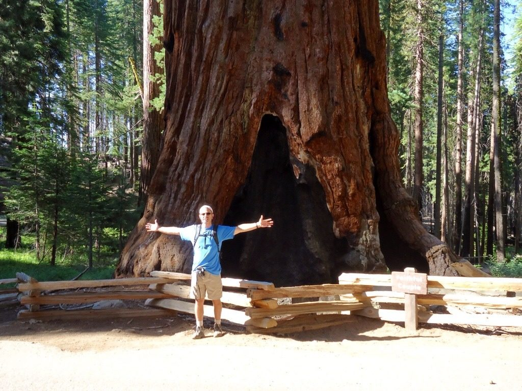 Man poses in front of large Sequoia tree