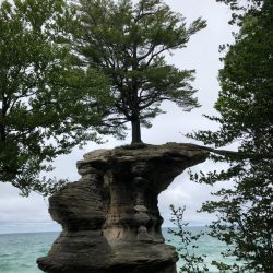 Rock formation with tree growing on it on over water at Lake Superior