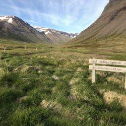 Korpudalur Alfta hike in Iceland
