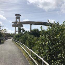 Observation Tower in Shark Valley,Everglades National Park