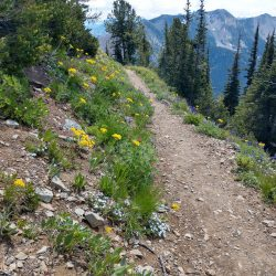 Hiking the Pacific Crest Trail in North Cascades National Park
