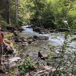 Panther Creek River in North Cascades National Park