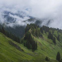 Sauk Mountain Ridge in North Cascades National Park