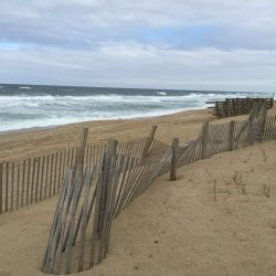 Beach in the Outer Banks in North Carolina