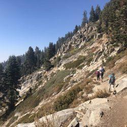 Alta hillside in Sequoia National Park