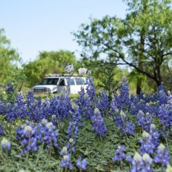 The Timberline van seen through a field of bluebonnets