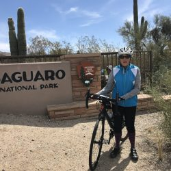 Cycling into Saguaro National Park in Southern Arizona