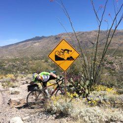 desert road sign