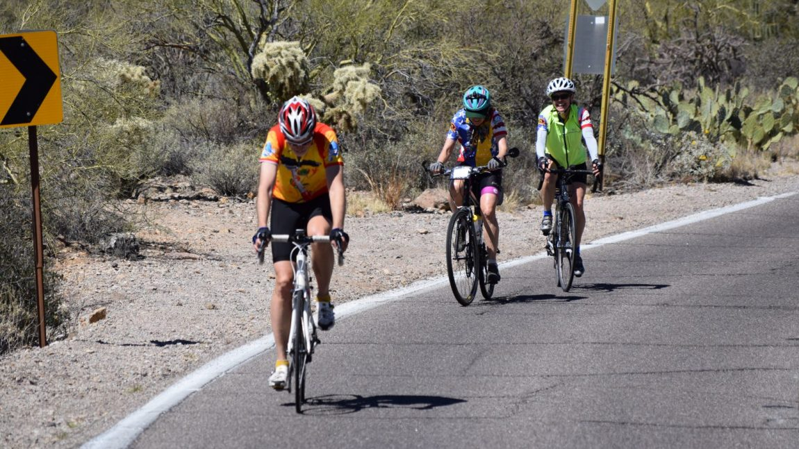 Timberline Adventures Invited to Sit on Bicycle Panel at Mountain Tourism Conference