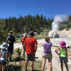 Lone Star Geyser erupts in Yellowstone National Park