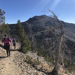 hiking trail in Yellowstone