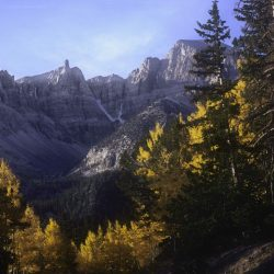 Mountain view in Great Basin National Park