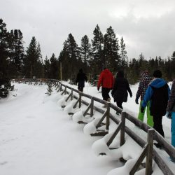 Walking the boardwalk in the snow in Yellowstone National Park