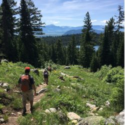 Hikers on a trail in Yellowstone National Park